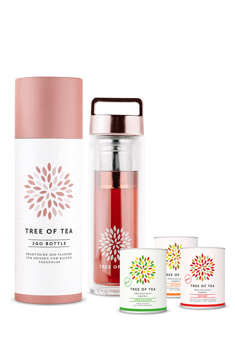Tea2go Set mit 3 kleinen Tee-Minis