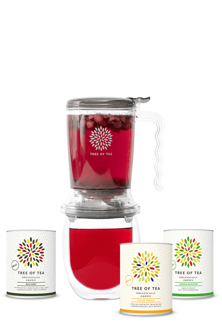Tea Maker, Teeglas und die Bunte Mischung in einem exklusiven Set