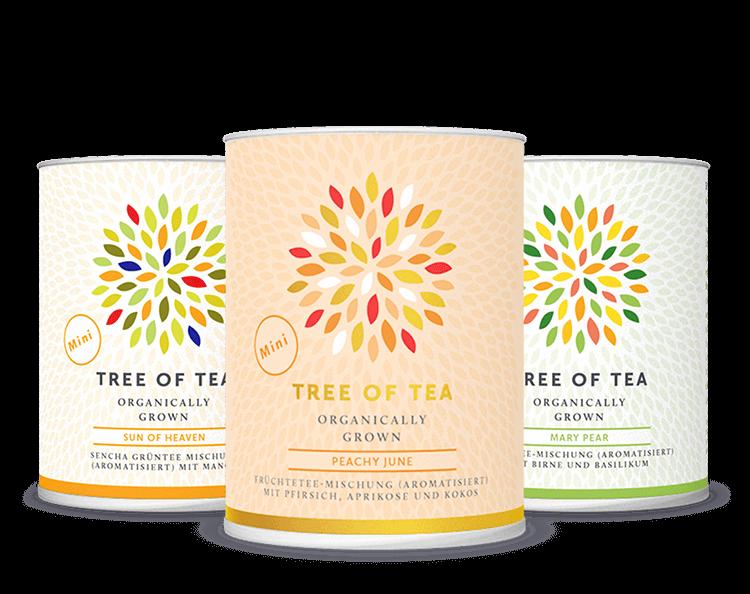 3 Tee-Minis in einer schicken Frühlingsbox