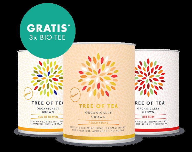 3 leckere Tee-Minis in der tropischen Geschenkbox