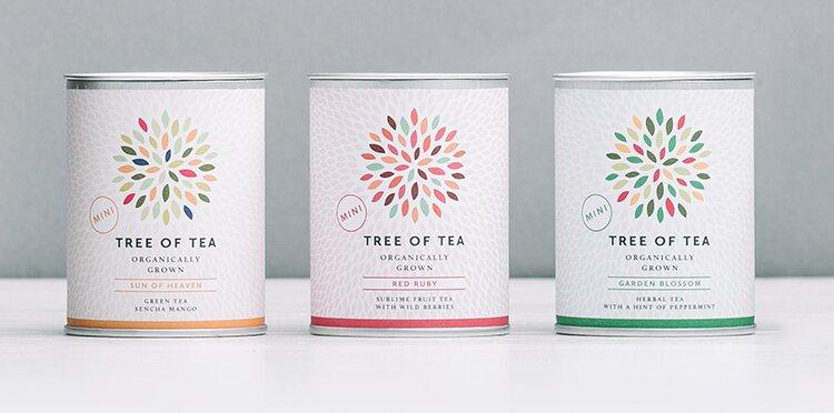 3 leckere Tee-Minis für besten Cold Brew Eisteegenuss
