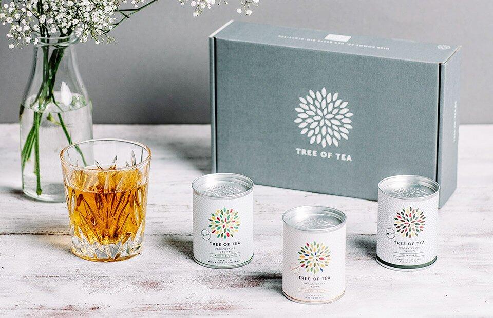 In unserem Tee-Set bekommst Du 3 leckere Sorten in Bio Qualität.
