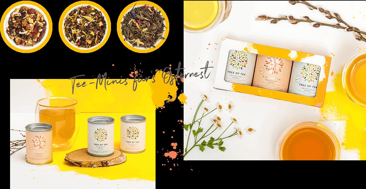 Limitertes Set: 3 Tee-Minis in einer frühlingshaften Geschenkbox!