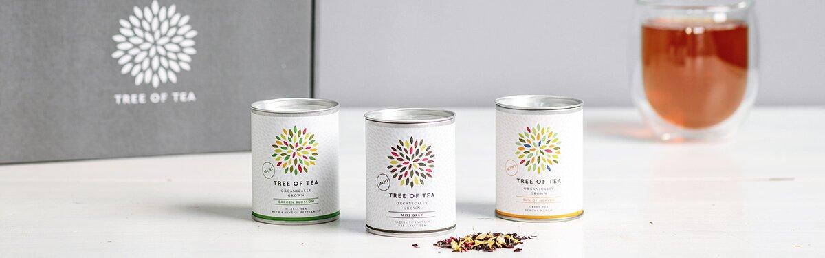 Unsere Tee-Minis in praktischen Probierpaketen in einer schönen Geschenkbox