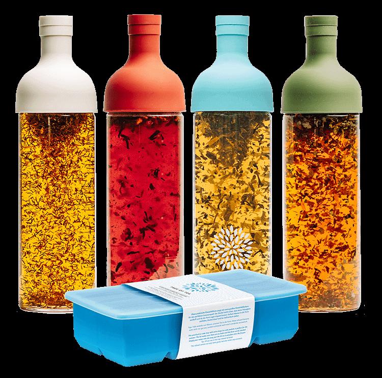 Das praktische Set aus Eiswürfelform und Eisteeflasche