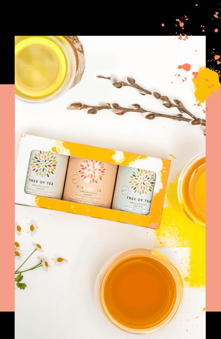 Das limitierte Frühlingsset mit 3 Tee-Minis in einer bunten Geschenkbox.