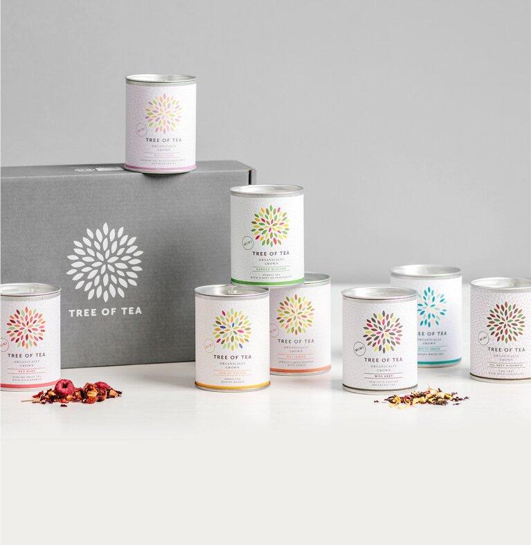 8 thee-mini's verpackt in een moderne geschenkdoos