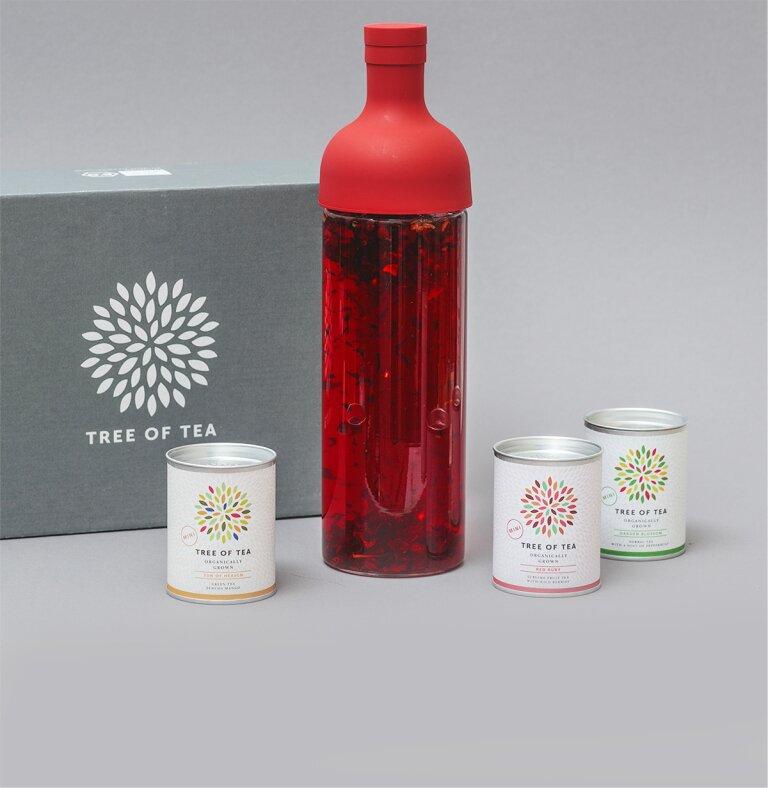 Die Eisteeflasche mit 3 leckeren Tee-Minis in einem Set