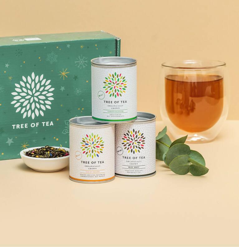 Die Teewelt von Tree of Tea mit leckeren Probierpaketen in der Weihnachtsbox