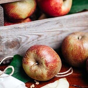 Am besten für frischen Apfelkuchen sind natürlich knackige heimische Äpfel, zum Beispiel Boskoop.